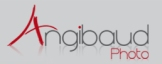 logo_angibaud